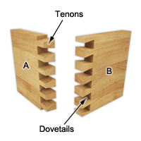 Insert the tenons in the dovetails