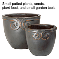 Small potted plants, seeds, plant food, and small garden tools