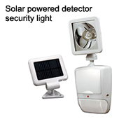 Solar powered detector security light