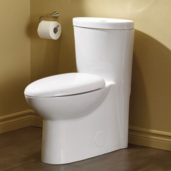 Dual flush toilet in a bathroom