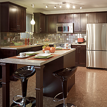 Rona kitchen cabinets cabinets matttroy Rona kitchen cabinets reviews